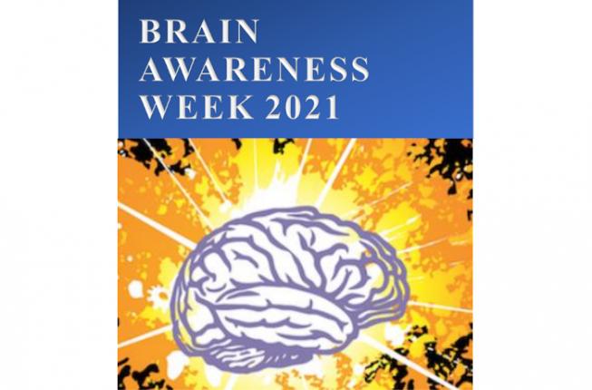 Collegamento a Brain Awareness Week 2021